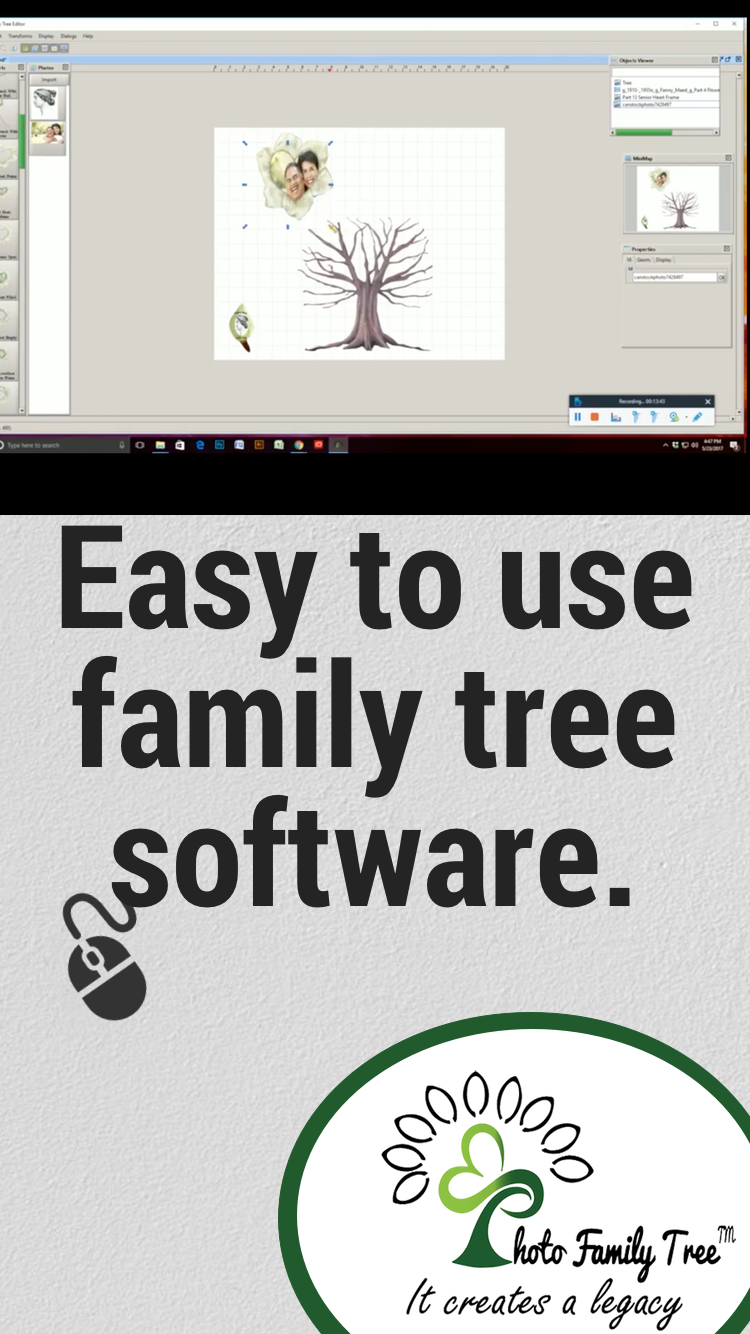 customize your photo family tree with tree parts palette canvas