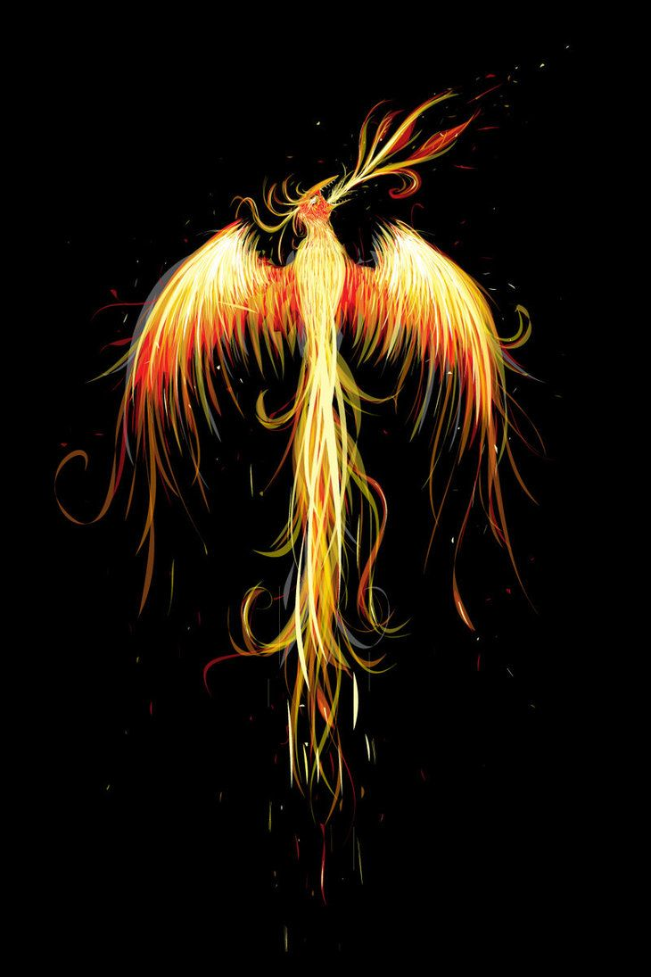 how to draw a phoenix rising