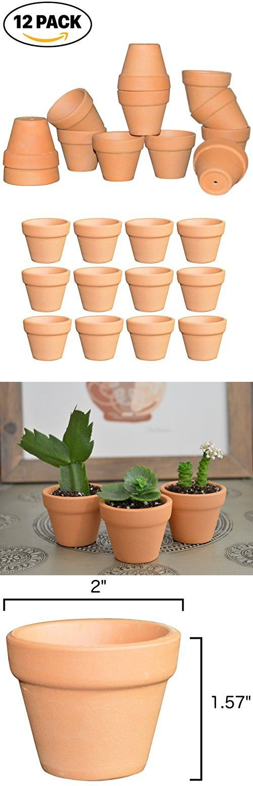 My Urban Crafts Small Terra Cotta Pots Mini Clay Flower Pots Great For Succulent Cactus Nursery Plante Clay Flower Pots Small Terracotta Pots Flower Pots