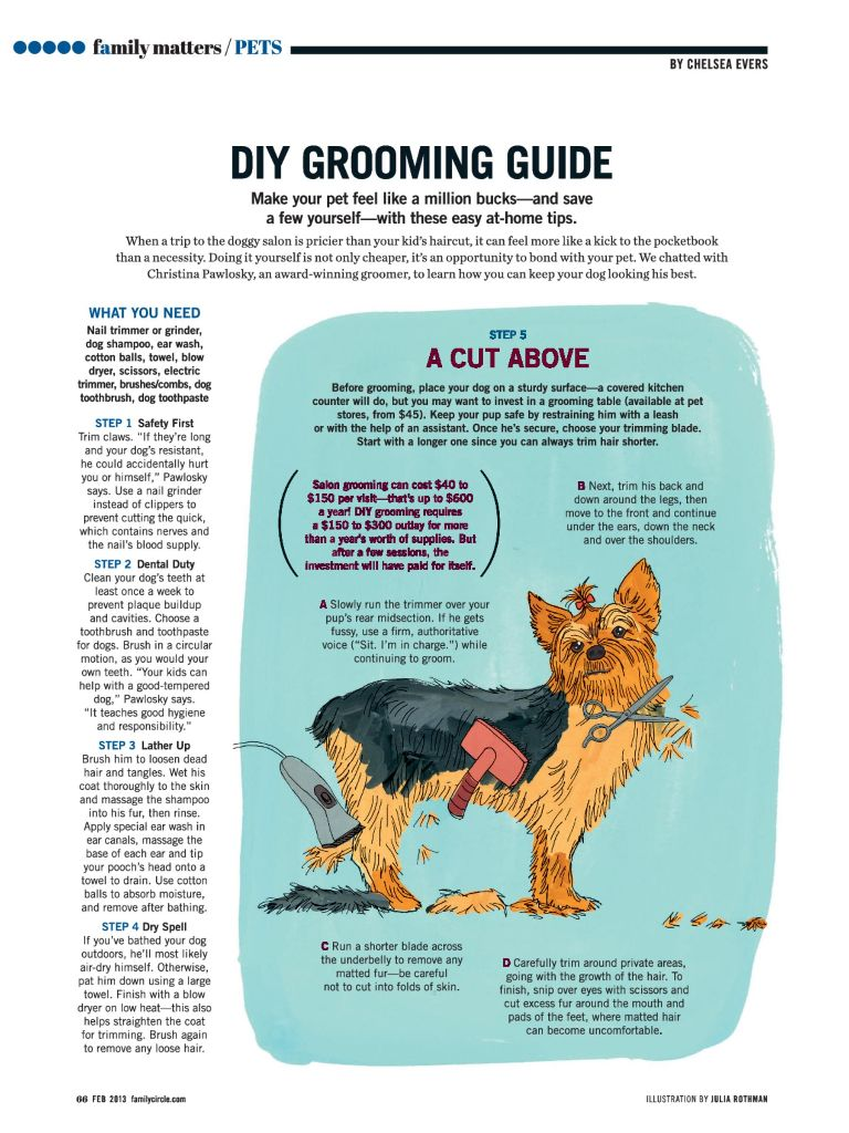 How to groom your dog! From Feb. \'13 Family Circle | Dogs ...