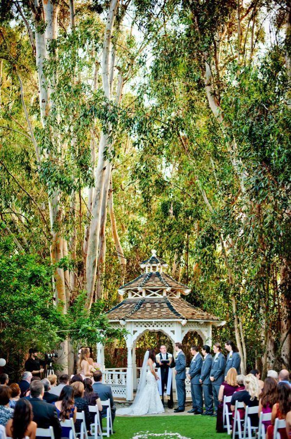 Backyard Wedding Venues San Diego 2021 in 2020 | San diego ...