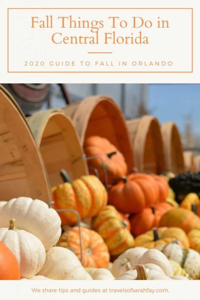 Fall Things To Do In Central Florida 13 Halloween Events And Activities 2020 Travels Of Sarah Fay In 2020 Seasonal Travel Orlando Travel Things To Do