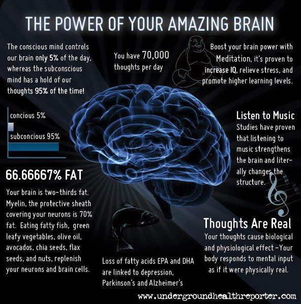 7 Awe-Inspiring Facts About Your Brain (infographic) | Intent Blog ...