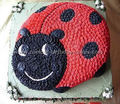 Birthday Party Ideas Homemade Ladybug Cake