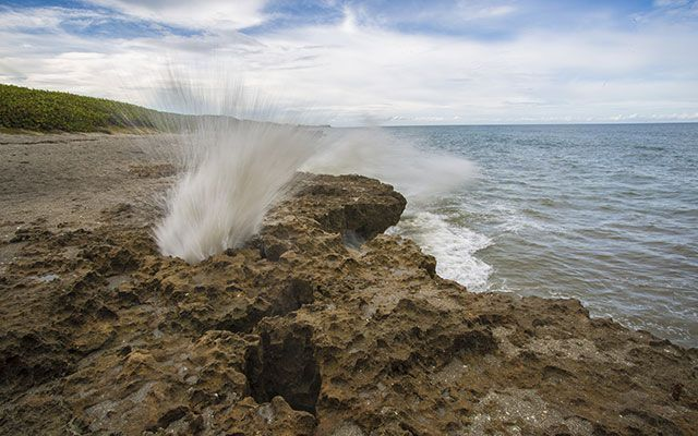 North Of West Palm Beach Blowing Rocks Preserve A Beach Preserve Featuring An Outcrop Of Anastasia Beautiful Places Nature Florida Adventures Barrier Island