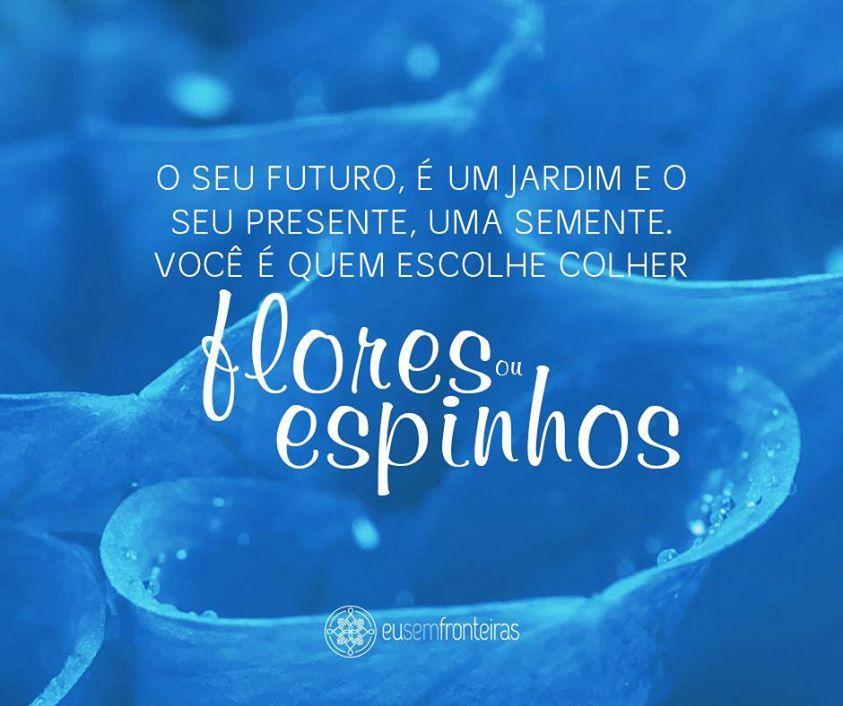 O seu futuro é um jardim e o seu presente, uma semente. Você é quem escolhe colher flores ou espinhos  - http://www.eusemfronteiras.com.br