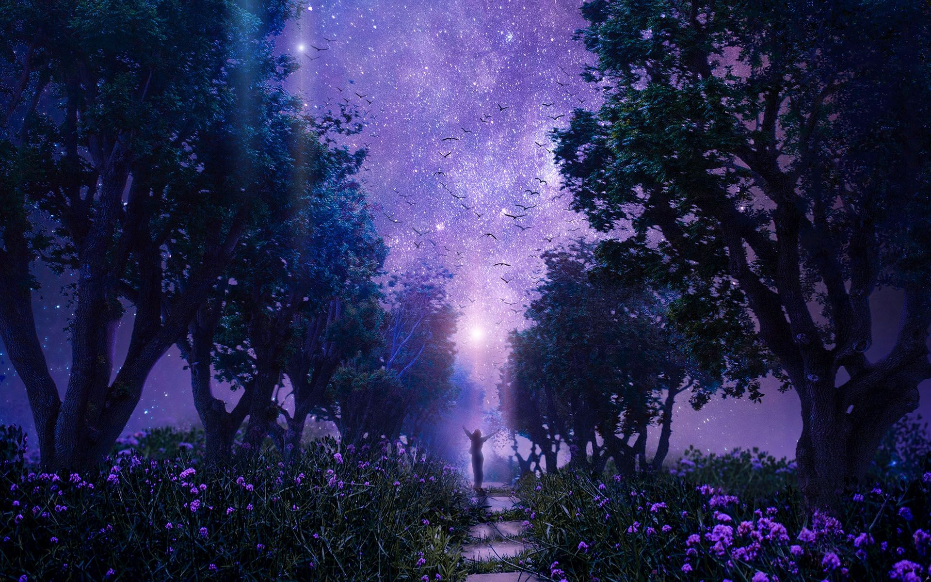 Purple Forest Wallpaper Night Sky Wallpaper Forest Pictures Anime Scenery Wallpaper