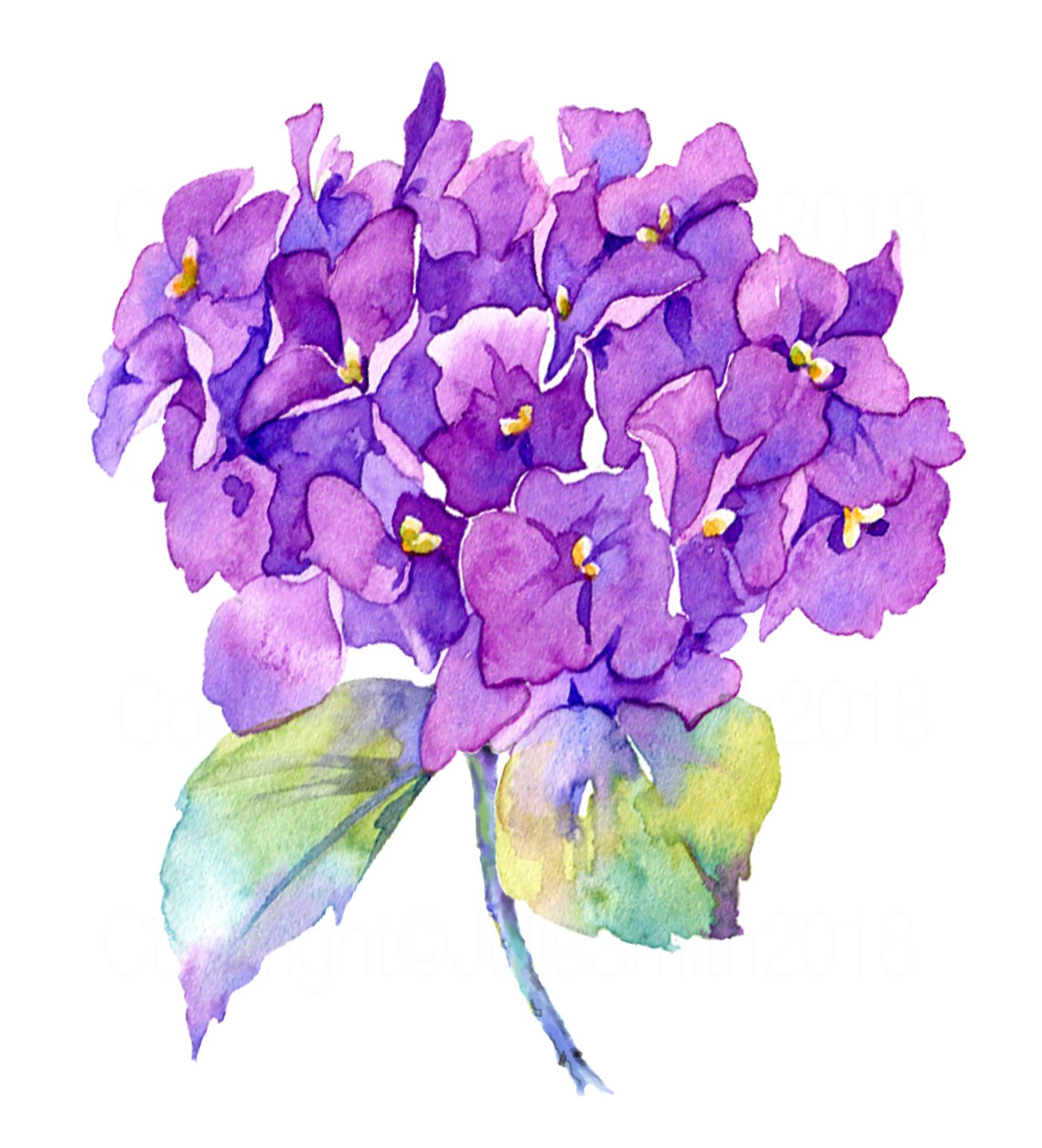 Pin by Cindy Price on Watercolor   Watercolor flowers ...