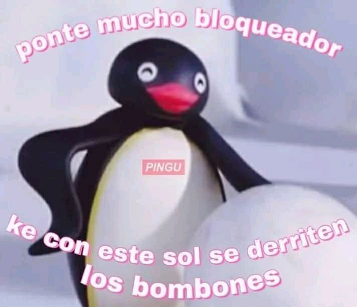 148 Best Pingu Images In 2020 Pingu Pingu Memes Pingu Pingu