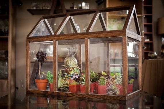 Gray Brown White Wood Terrarium w// 2 Doors House Shaped Design Clear Glass New