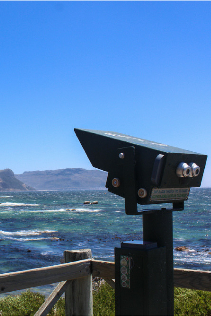 The Ultimate Cape Point Tour by Cape Xtreme my experience
