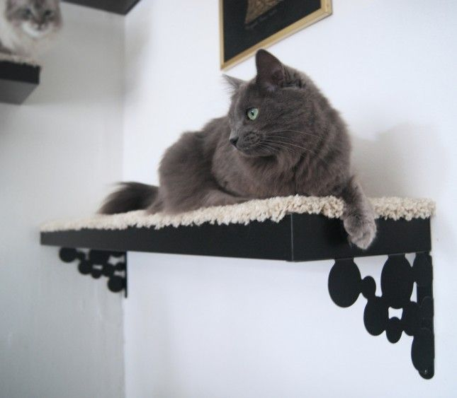 13 IKEA Hacks Your Pets Will Appreciate via Brit + Co