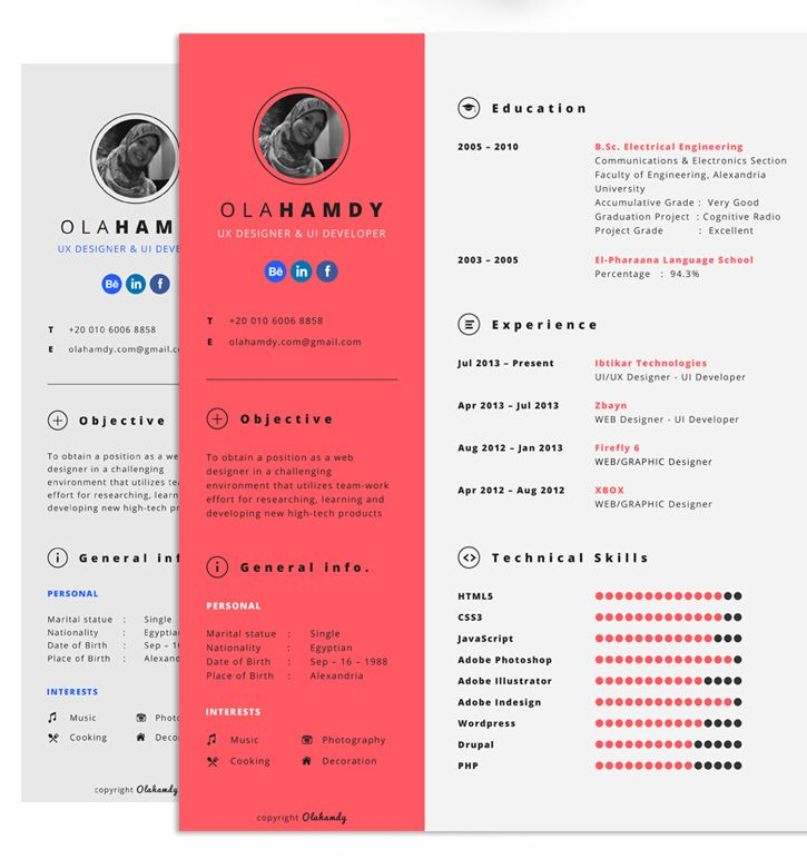 70 Well-Designed Resume Examples For Your Inspiration Graphic