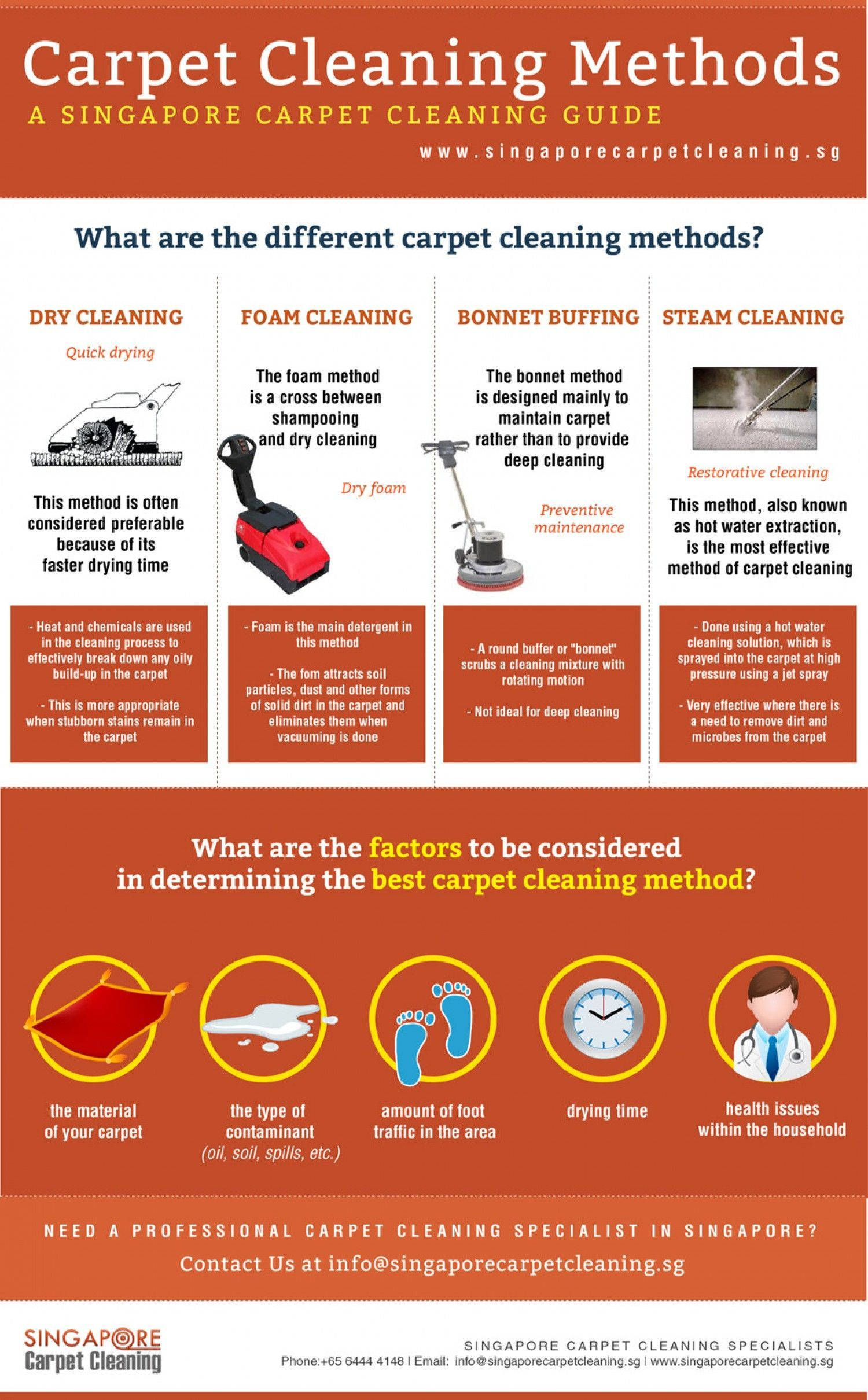 Best Carpet Cleaning Company To Remove Pet Stains Www