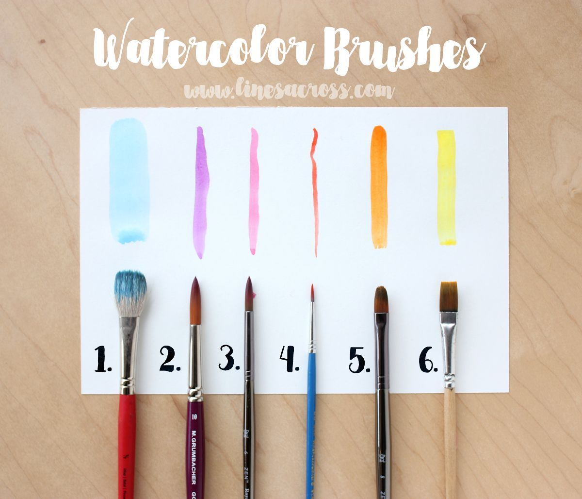 Watercolors For Beginners Basic Supplies With Images
