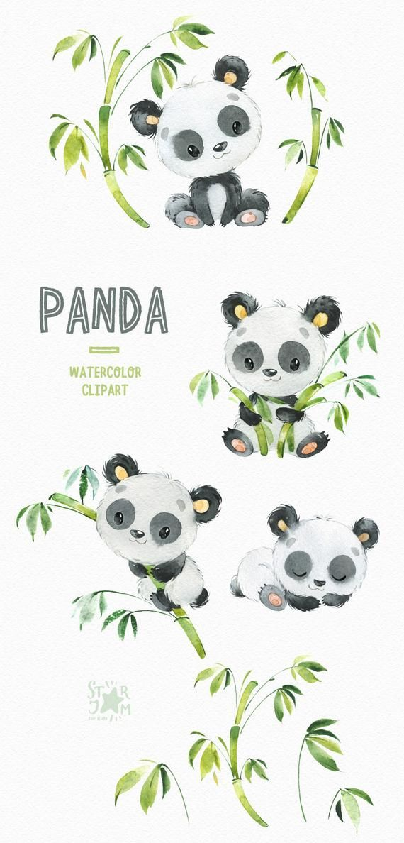 Panda. Kleine Tiere Aquarell Clipart, Aquarell, Bär, Panda-junges, Bambus, Blumen, Baby-Dusche, Kinder, Baby, niedlich, Kindergarten Kunst, Kinder
