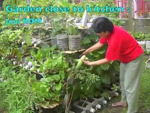 Different types of containers can be used to grow vegetables and tree  saplings at home. Different types of containers can be used to grow vegetables and