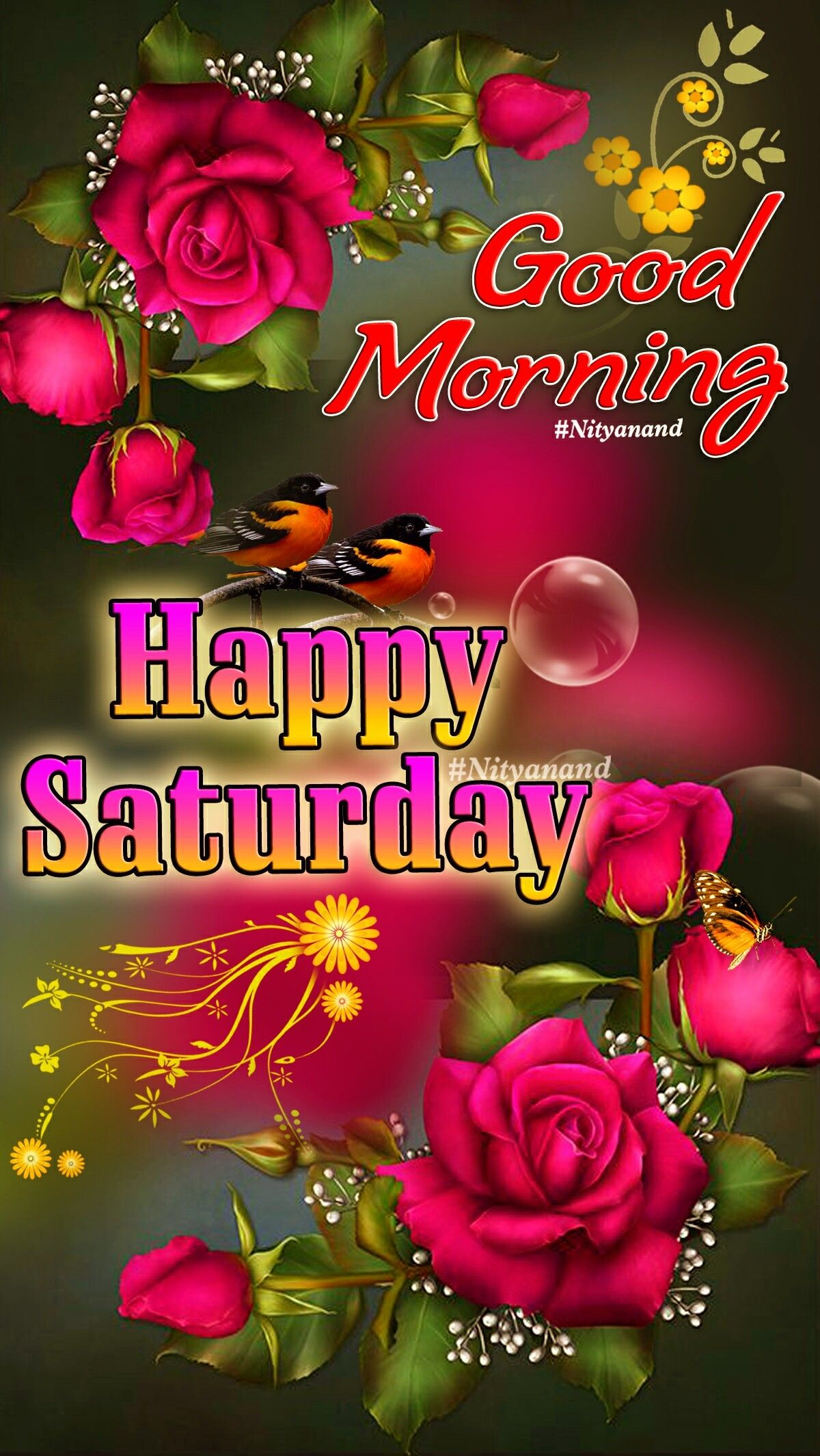 Happy Saturday Good Morning Friends Pictures, Photos, and ... |Good Morning Happy Saturday Friends