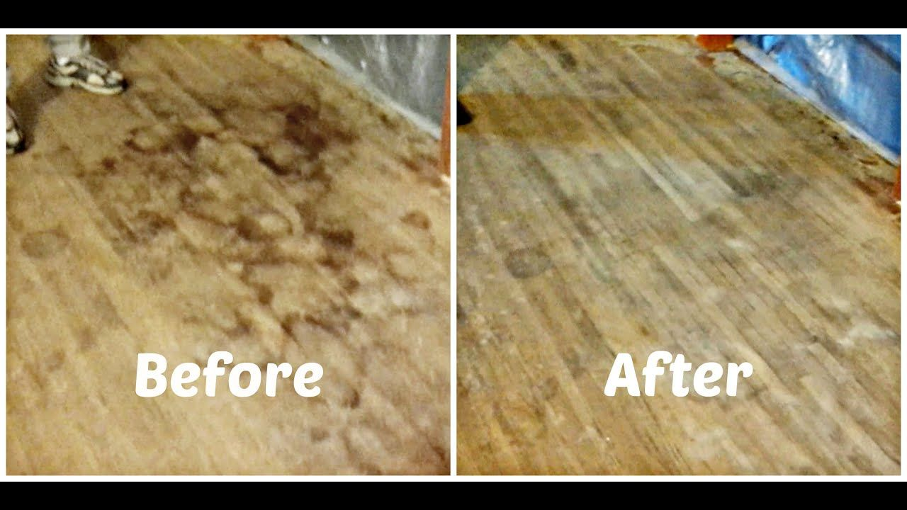 The Best How To Get Old Pet Urine Stains Out Of Hardwood
