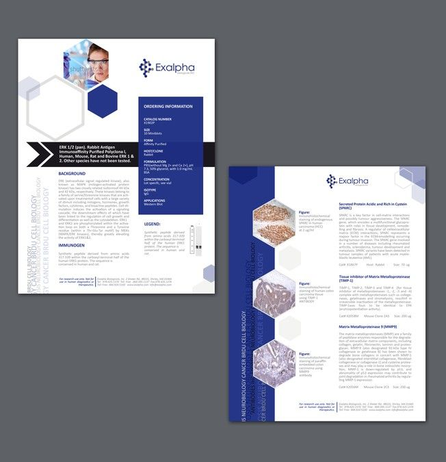 Exalpha Sell Sheet Template By Marco Davelouis  Business