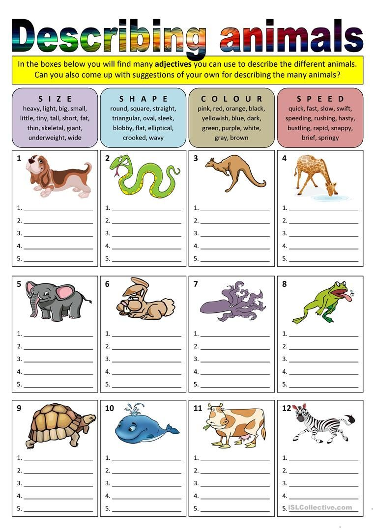 Describing Animals Adjectives English Lessons For Kids Teaching English English Activities [ 1079 x 763 Pixel ]