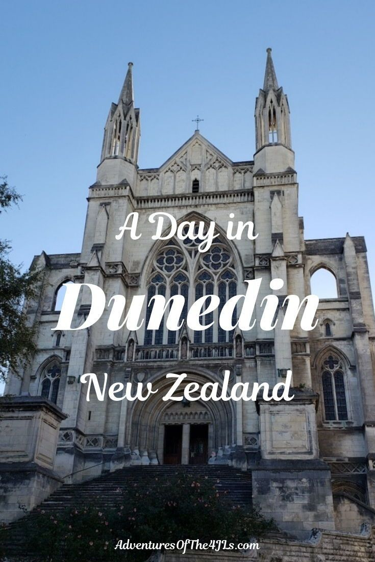 Dunedin, New Zealand with Kids. When traveling with kids to New Zealand, a farmstay in Dunedin is the way to go!  A sheep dog demonstration, sheep shearing, beaches, and a wonderful city made for an amazing travel destination.  Join the 4 JL's as their family travels to New Zealand and takes a 2 week international road trip. #adventuresofthe4jls #travel #dunedin #newzealand #oceania #roadtrip #churches #travelinspiration #worldtravel #travelwithkids