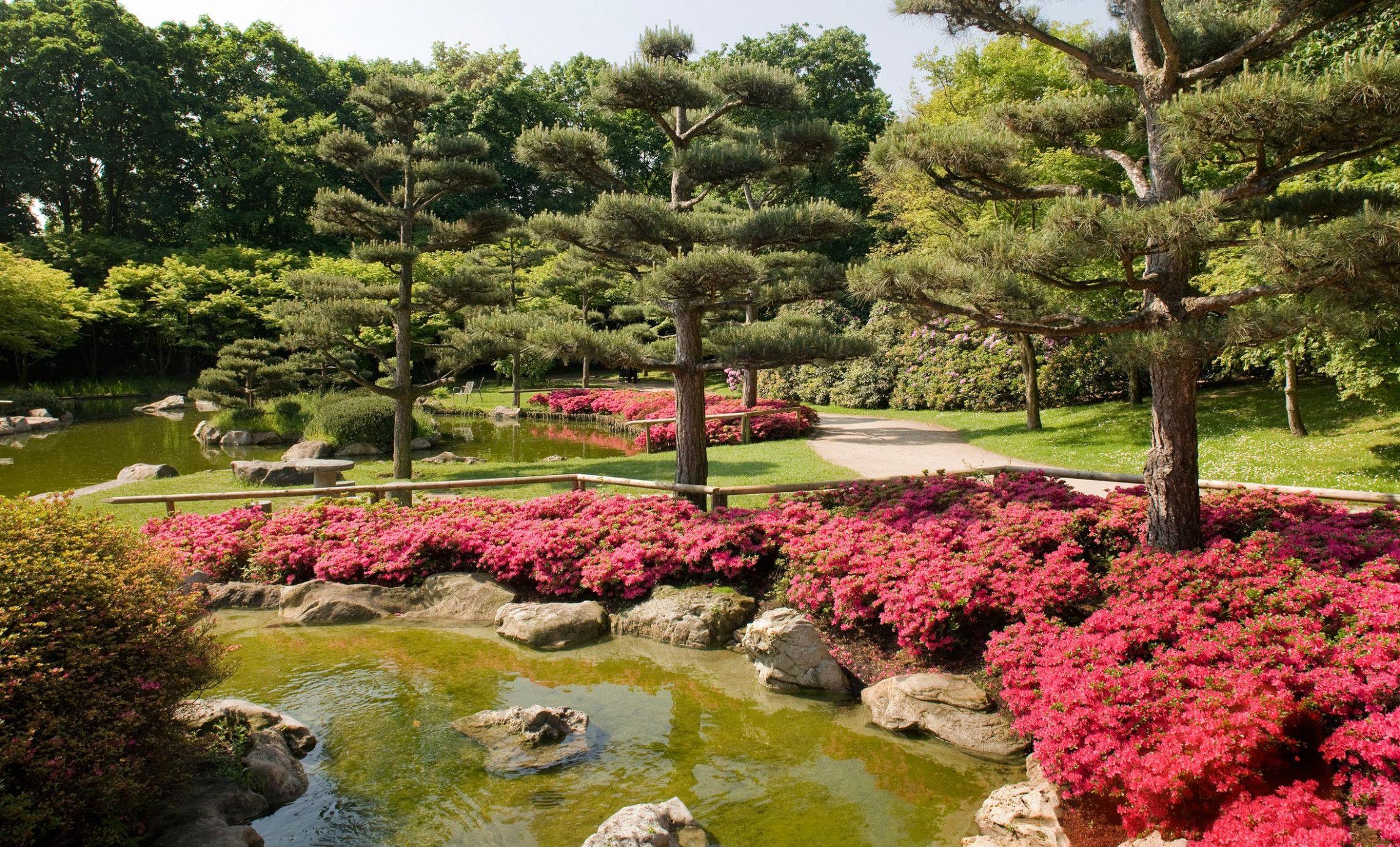 Japanischer Garten Deutschland Japanischer Garten Garten Garten Ideen