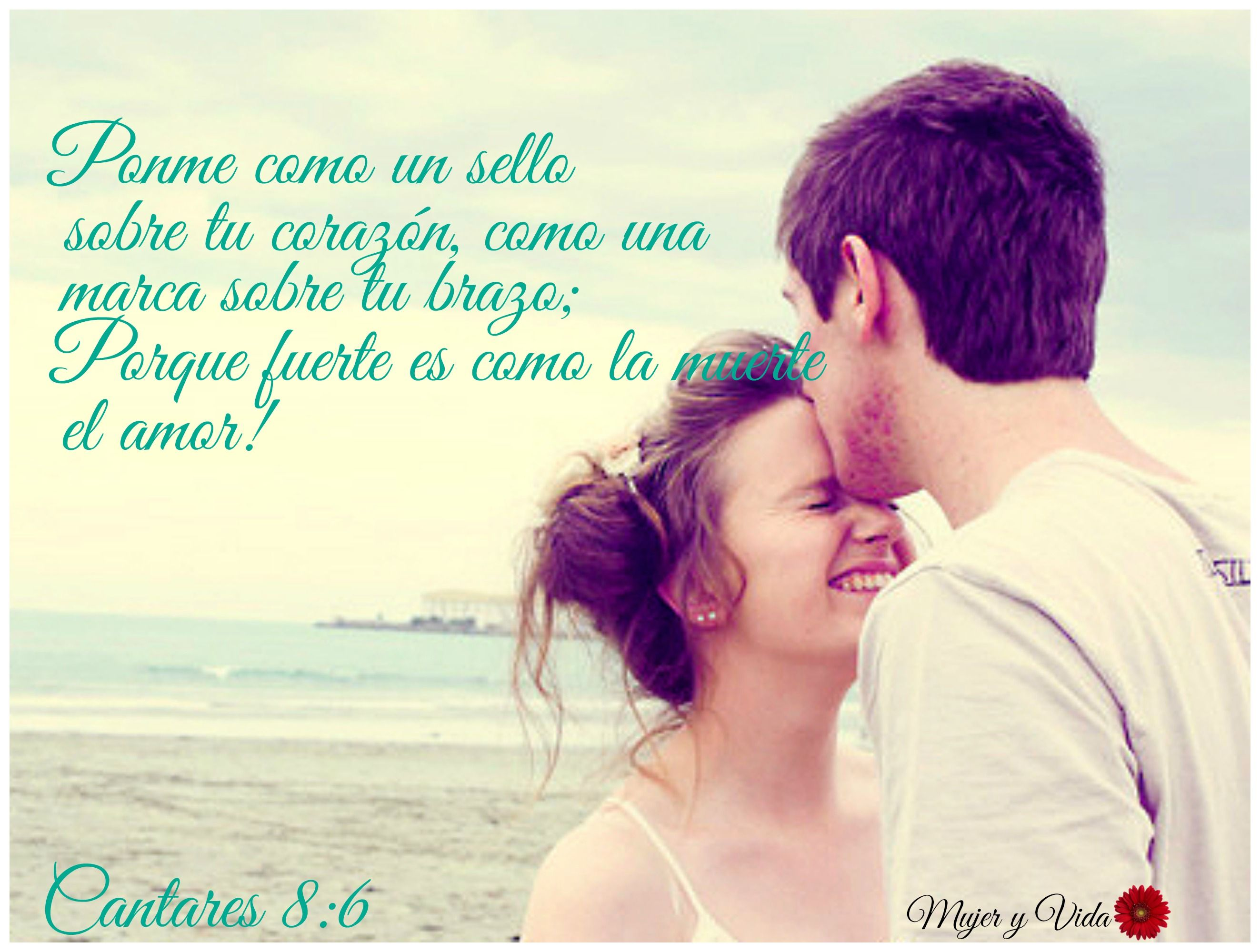 Matrimonio Segun La Biblia Reina Valera : La biblia cantares my live pinterest el amor es