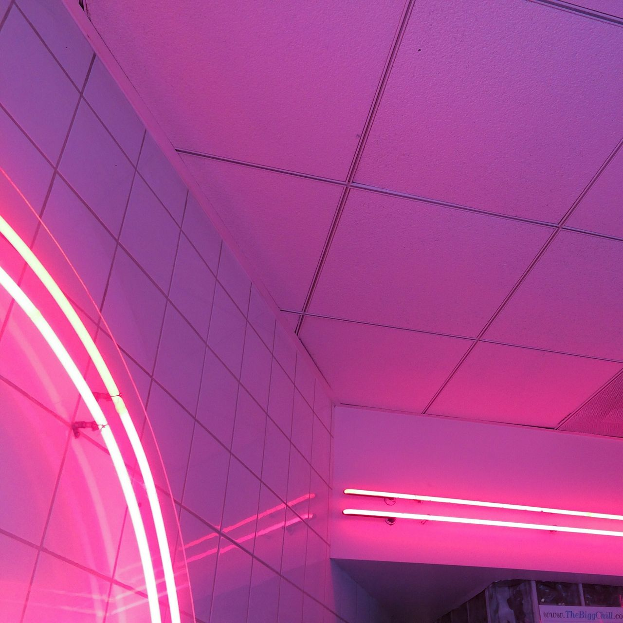 Sleazeburger Neon Aesthetic Purple Aesthetic Neon
