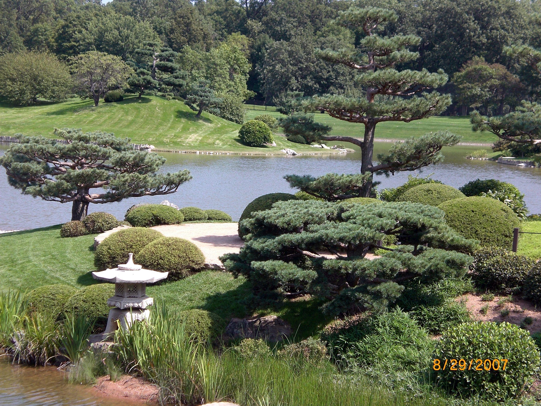 Botanical Japanese garden
