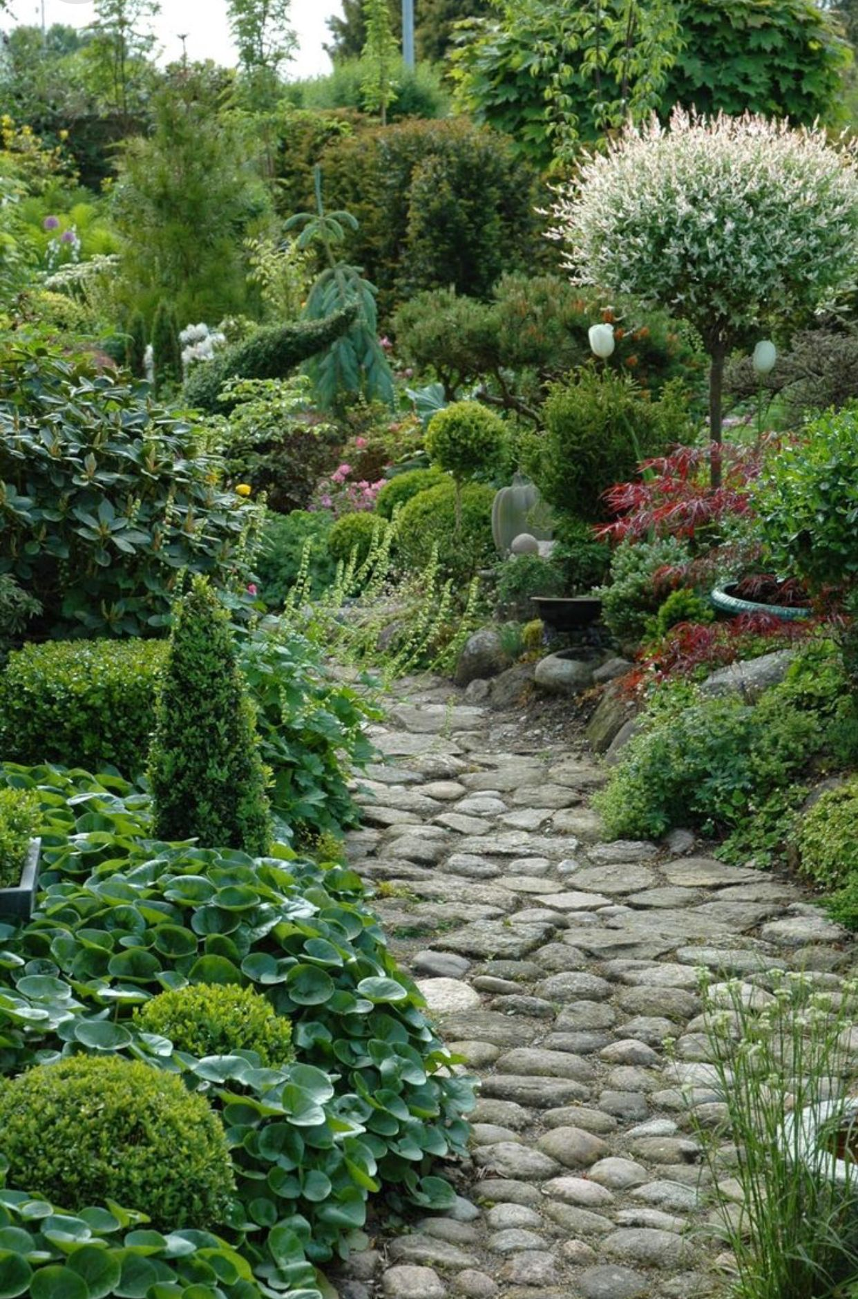 Photo of Would love to loose myself on this garden path…