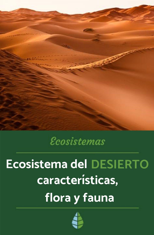 Ecosistema Del Desierto O Desértico Características Flora Y Fauna Ecosistema Del Desierto Ecosistemas Animales Del Desierto