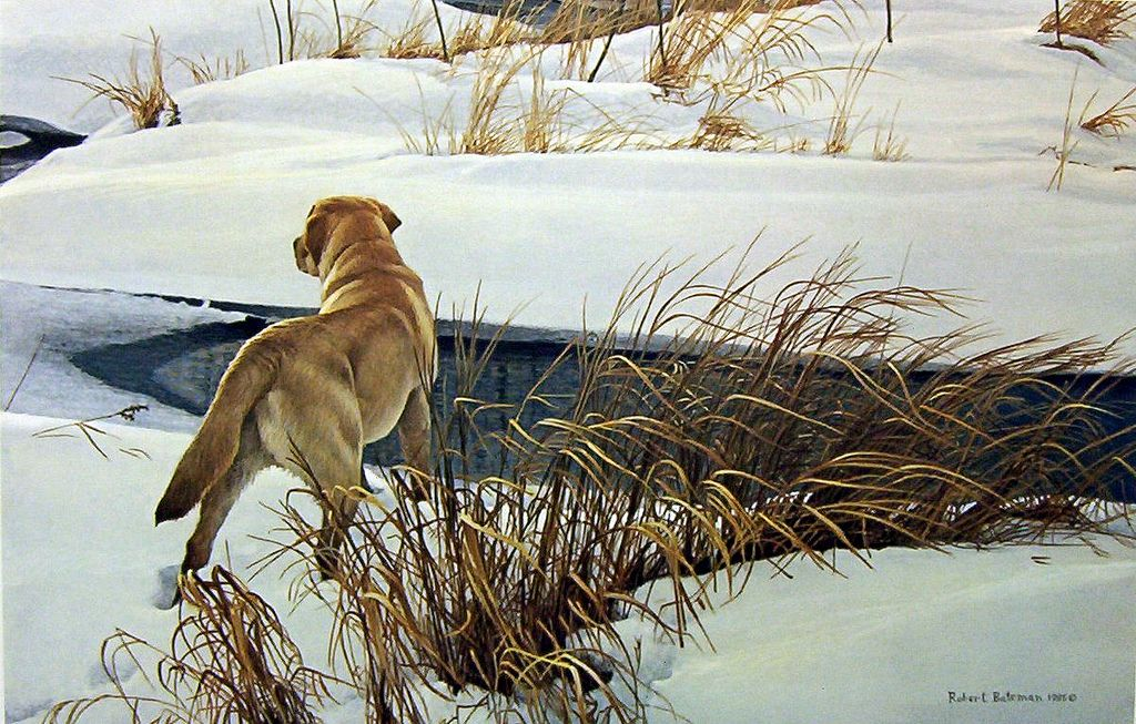 "Robert Bateman ""Winter Companion – Yellow Labrador""  1985 