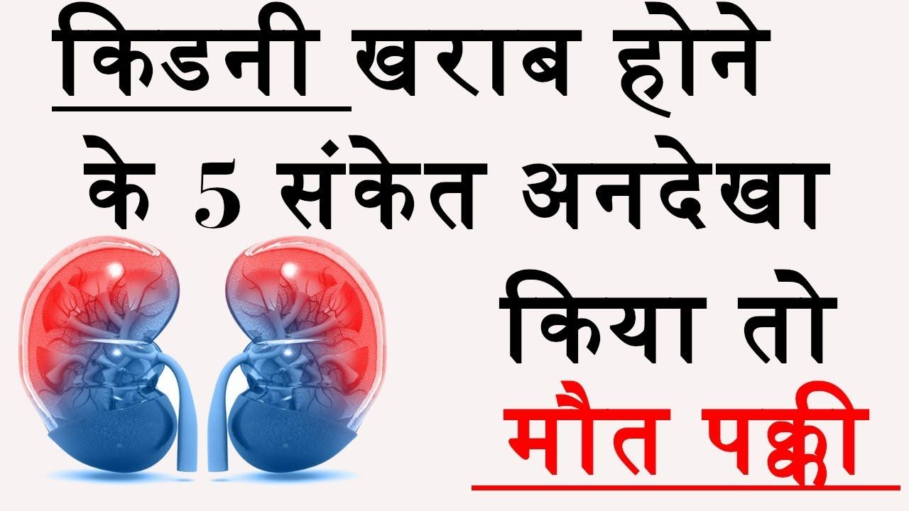 Kidney Diseases In Hindi Kidney Failure Disease