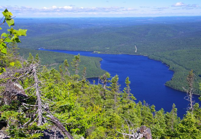 View from the lookout on Mt. Sagamook Peak of Big Nictau Lake, NB