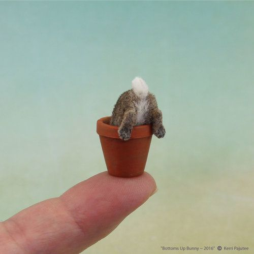 Gallery - Kerri Pajutee Miniature Animals #needlefelting