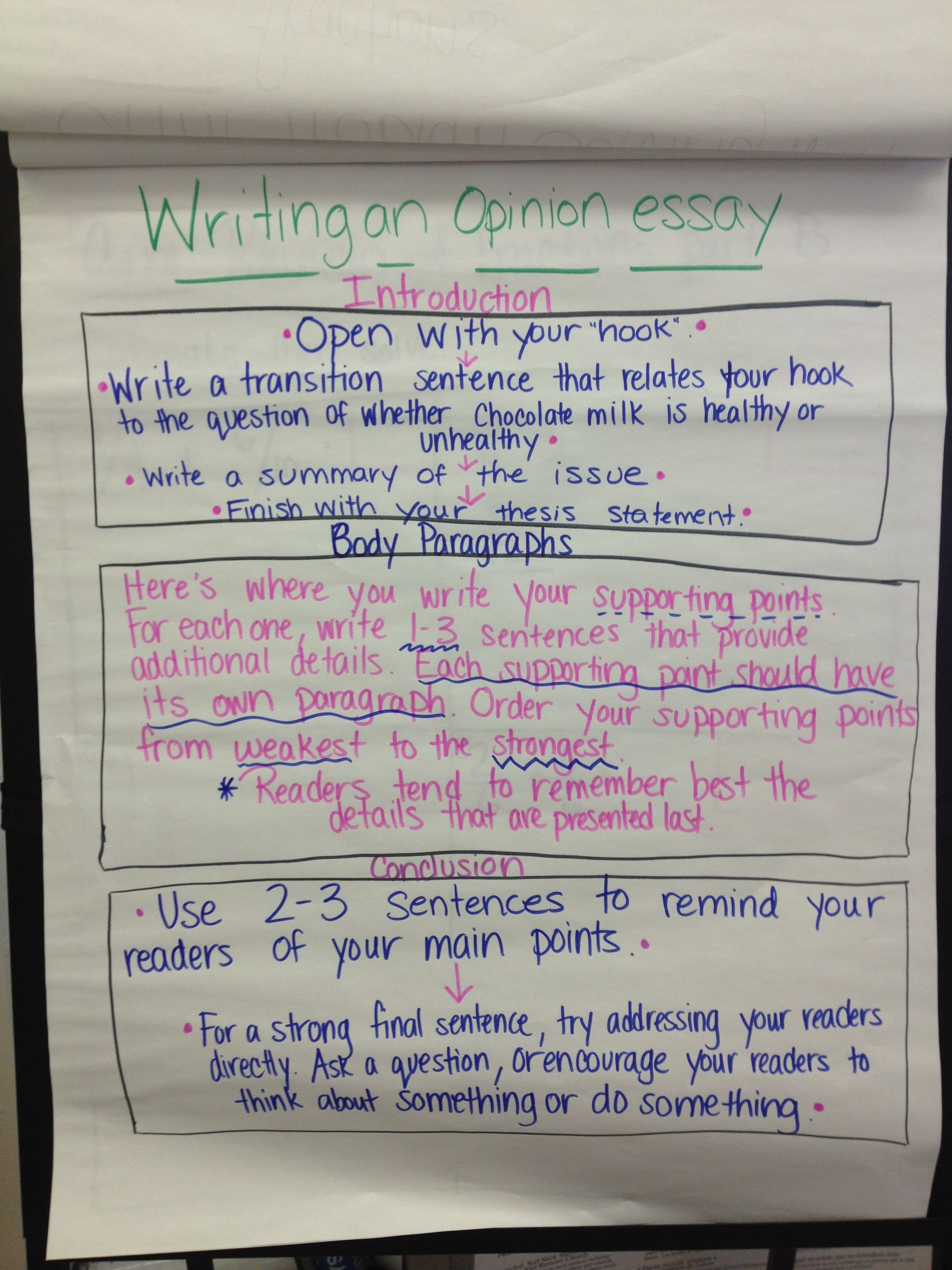 Steps For Writing An Opinion Essay 5th Grade