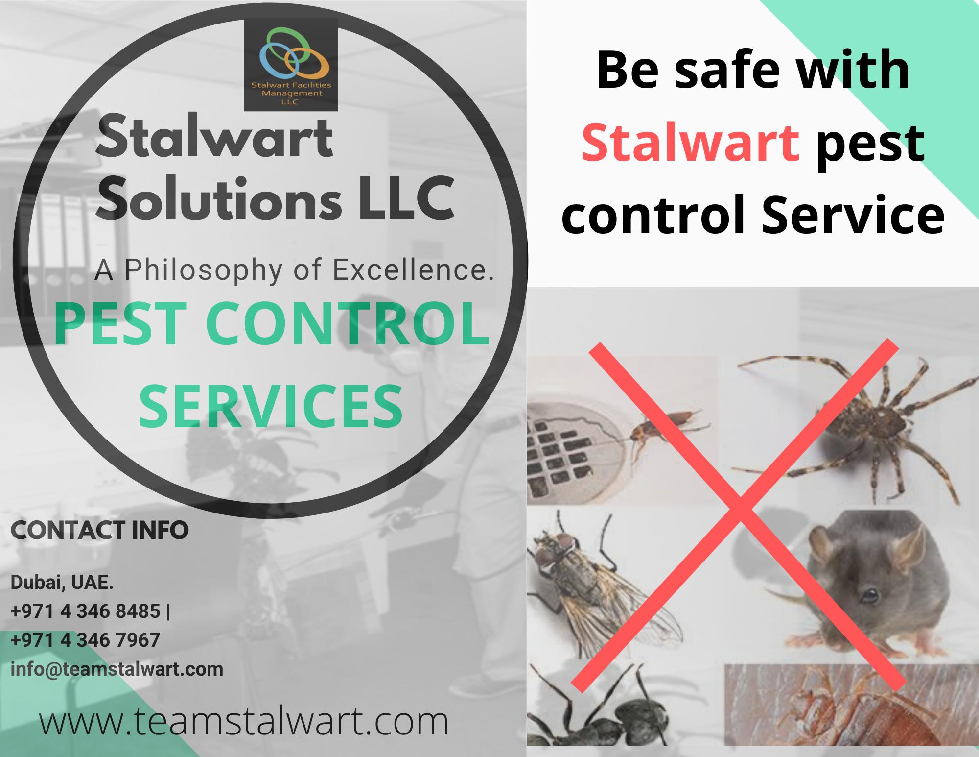 Municipality Approved Pest Control Services Company Dubai