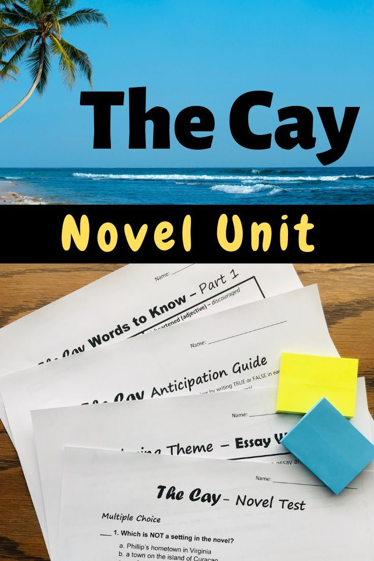 The Cay Novel Study Activities Distance Learning Novel