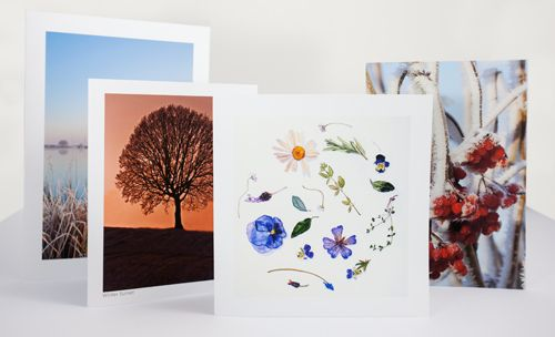 Grettings Card Printing. Prices at £1 or £1.10 a card per card depending on size, but INCLUDES envelopes and cellophane pouches