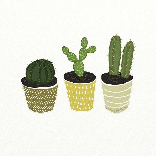 ilustración de cactus #ilustracion #cactus #illustration   art ...