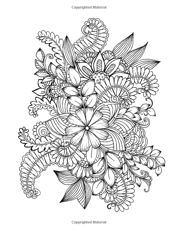 Amazon.com: Flowers and Floral Patterns: 60 Full Page Line ...