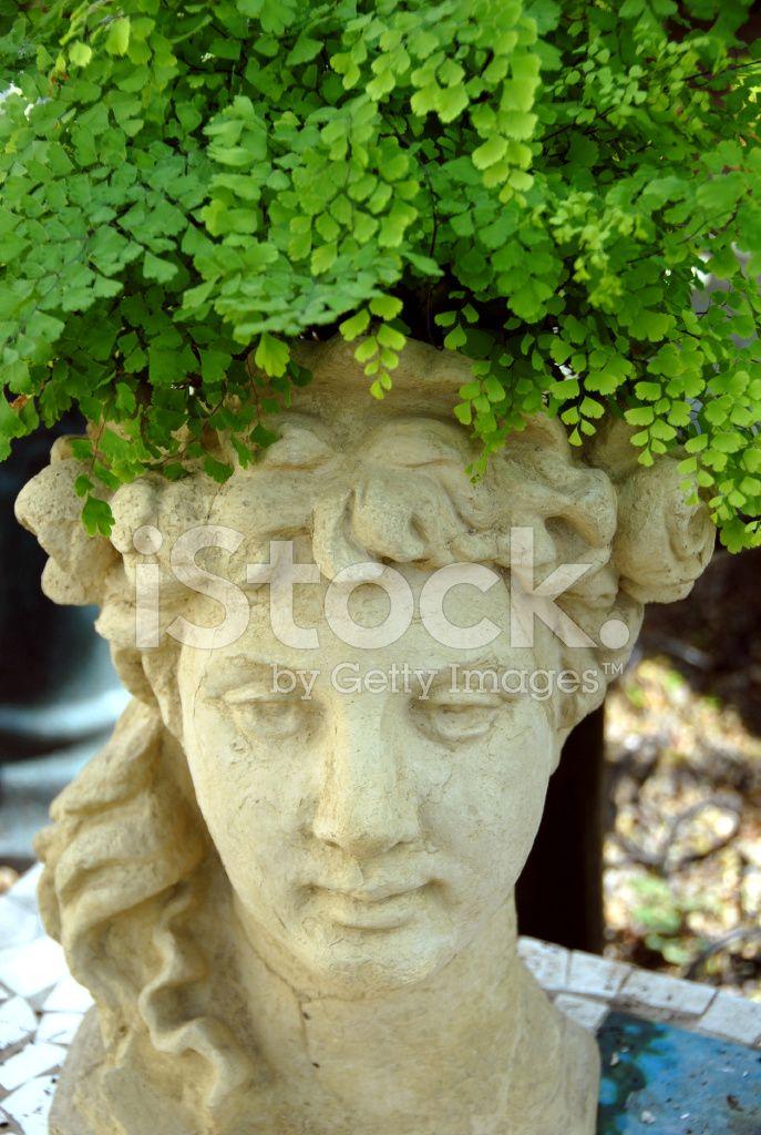 Garden Fern, Greek Goddess Head Growing IN Flower Planter Stock Photos    FreeImages.com