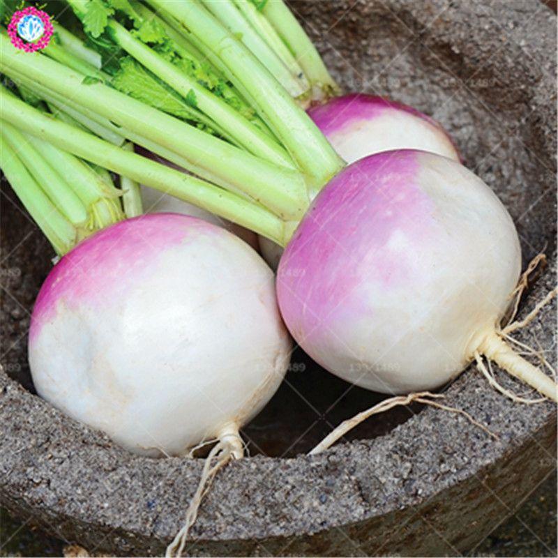 100pcs Chinese Green Turnip Seeds Real Organic White Cherry Radish Vegetable Seeds Us 0 42 Turnip Vegetable Seed Vegetables