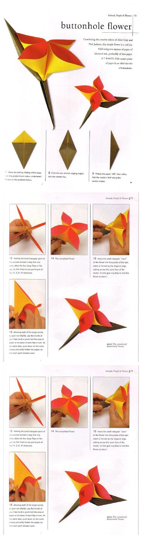 Origami Buttonhole Flower Origami Flora And Fauna Pinterest