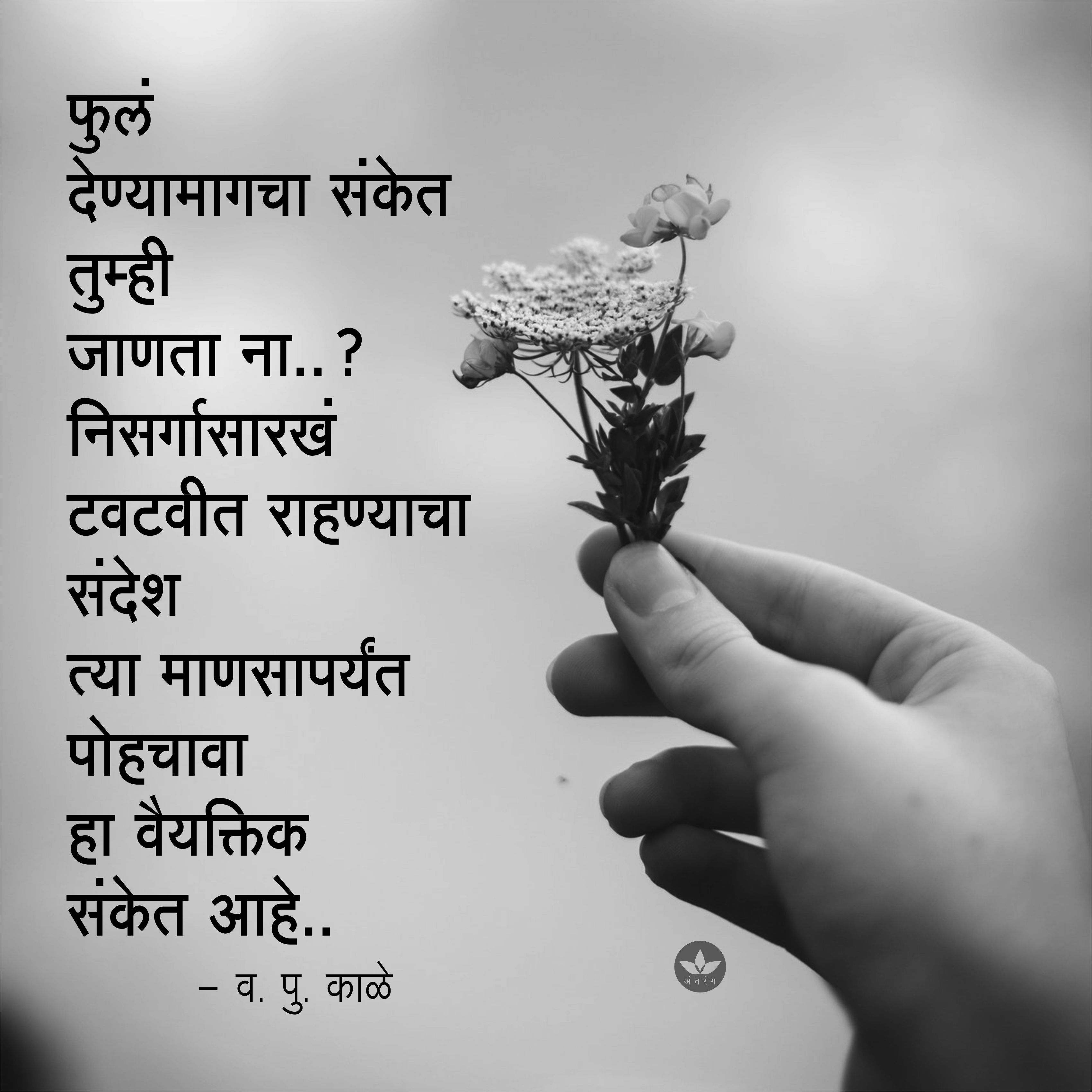 Pin by Nilesh Gitay on Marathi Quotes Affirmation quotes
