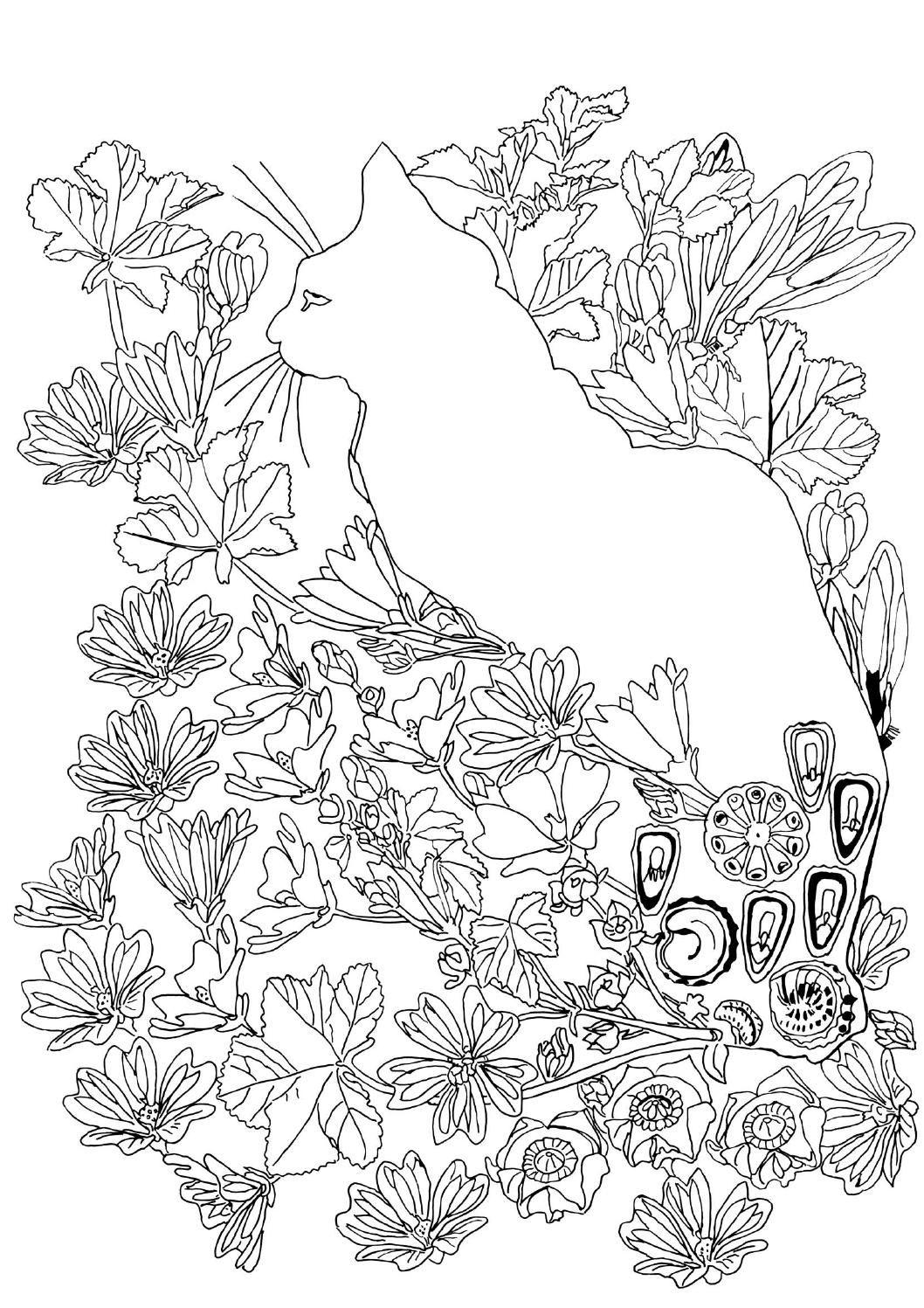 Pippas Magical Garden