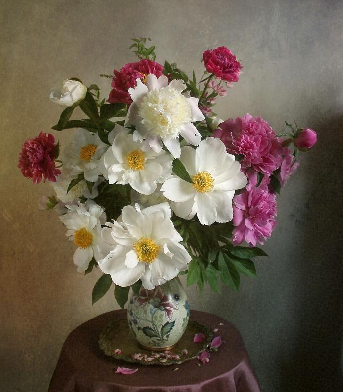 Фотография фотографа - *** | Раскраска по цифрам, Цветы