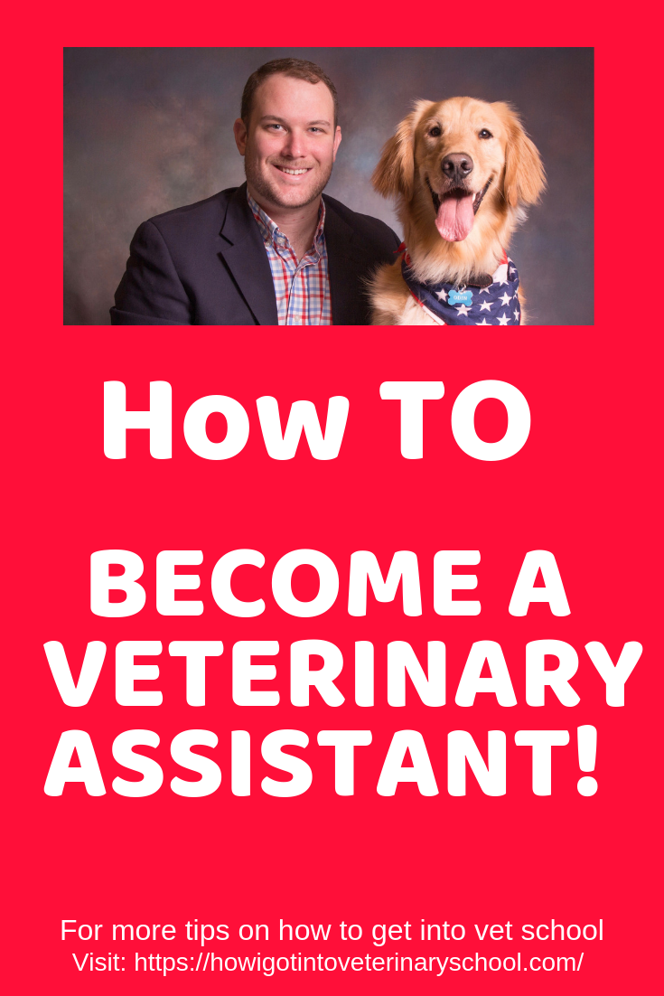 From Veterinary Assistant To Dvm Student At Lmu Veterinary Assistant Veterinary Vet School