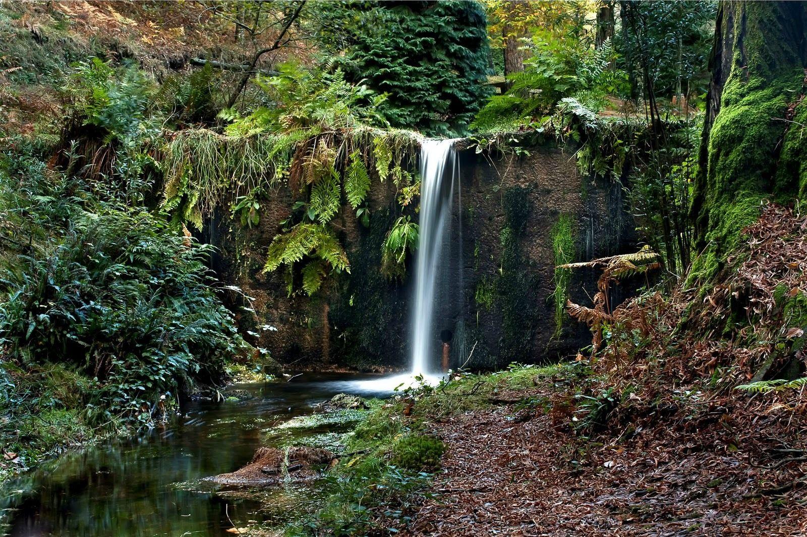 Monte Aloia Nature Park Spain | ... da Cabana (Traditional Cache) in Galicia, Spain created by Geoaventura